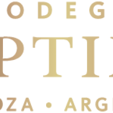 Bodegas Séptima Mendoza Argentina